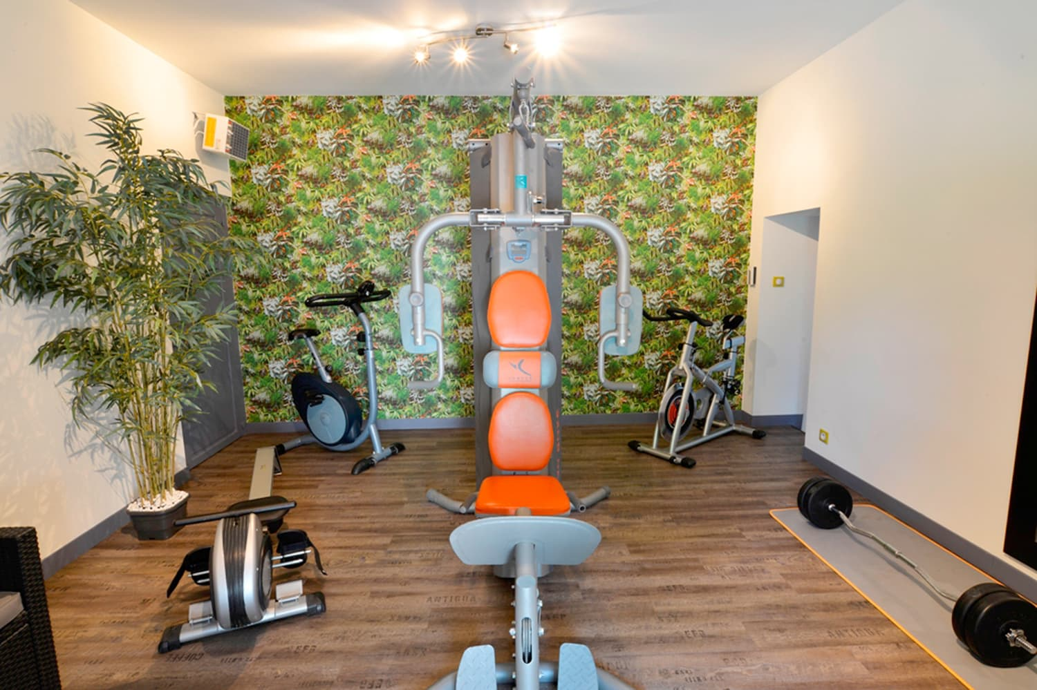 Fitness room in Burgundy holiday château