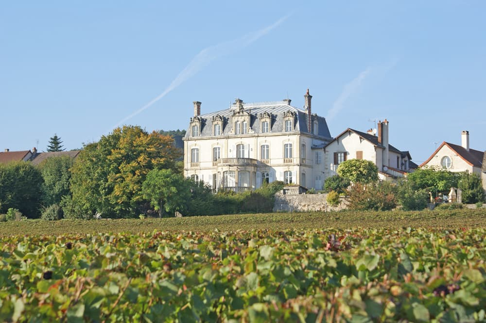 Holiday château in Burgundy