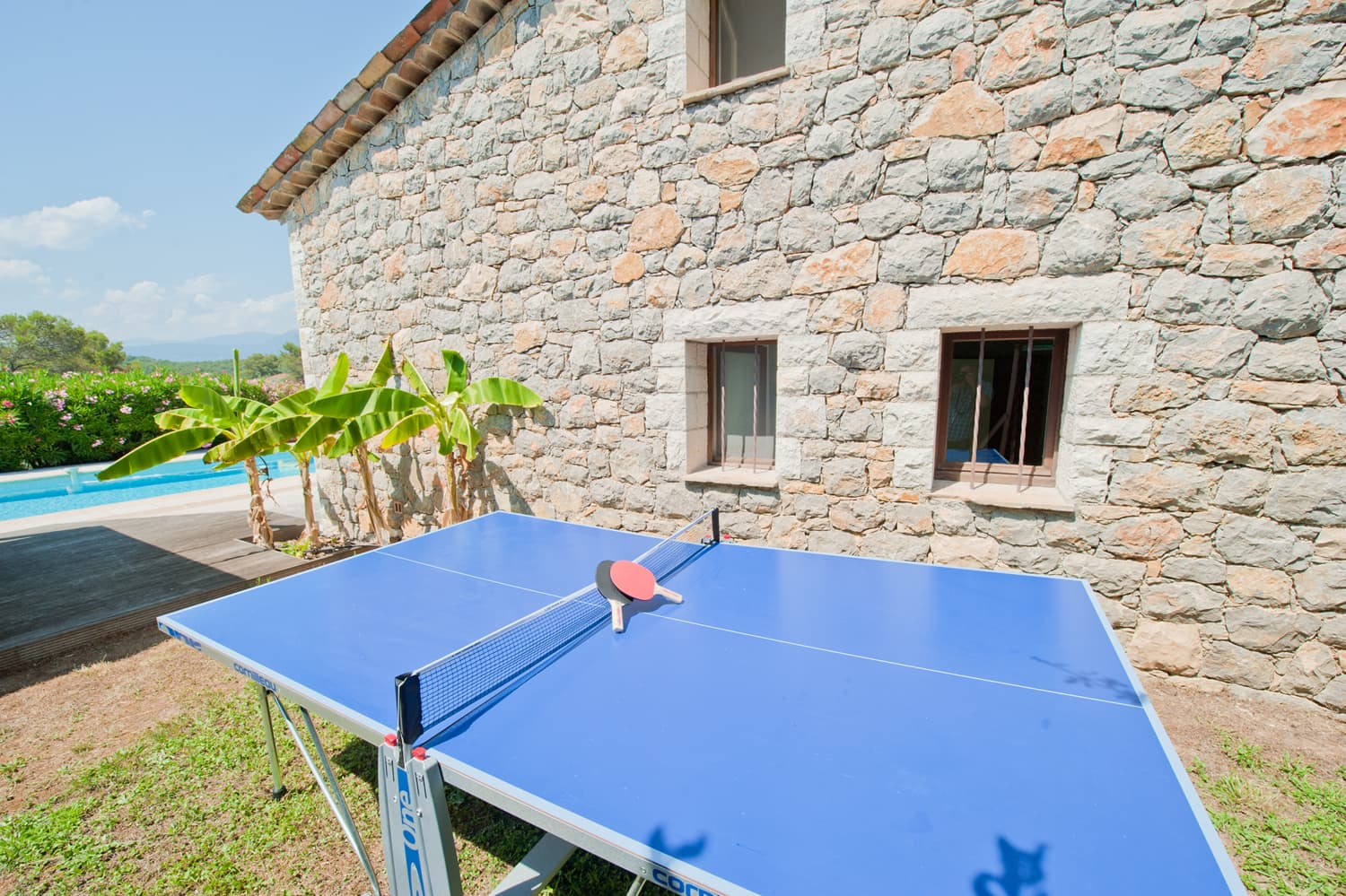 Table tennis in garden