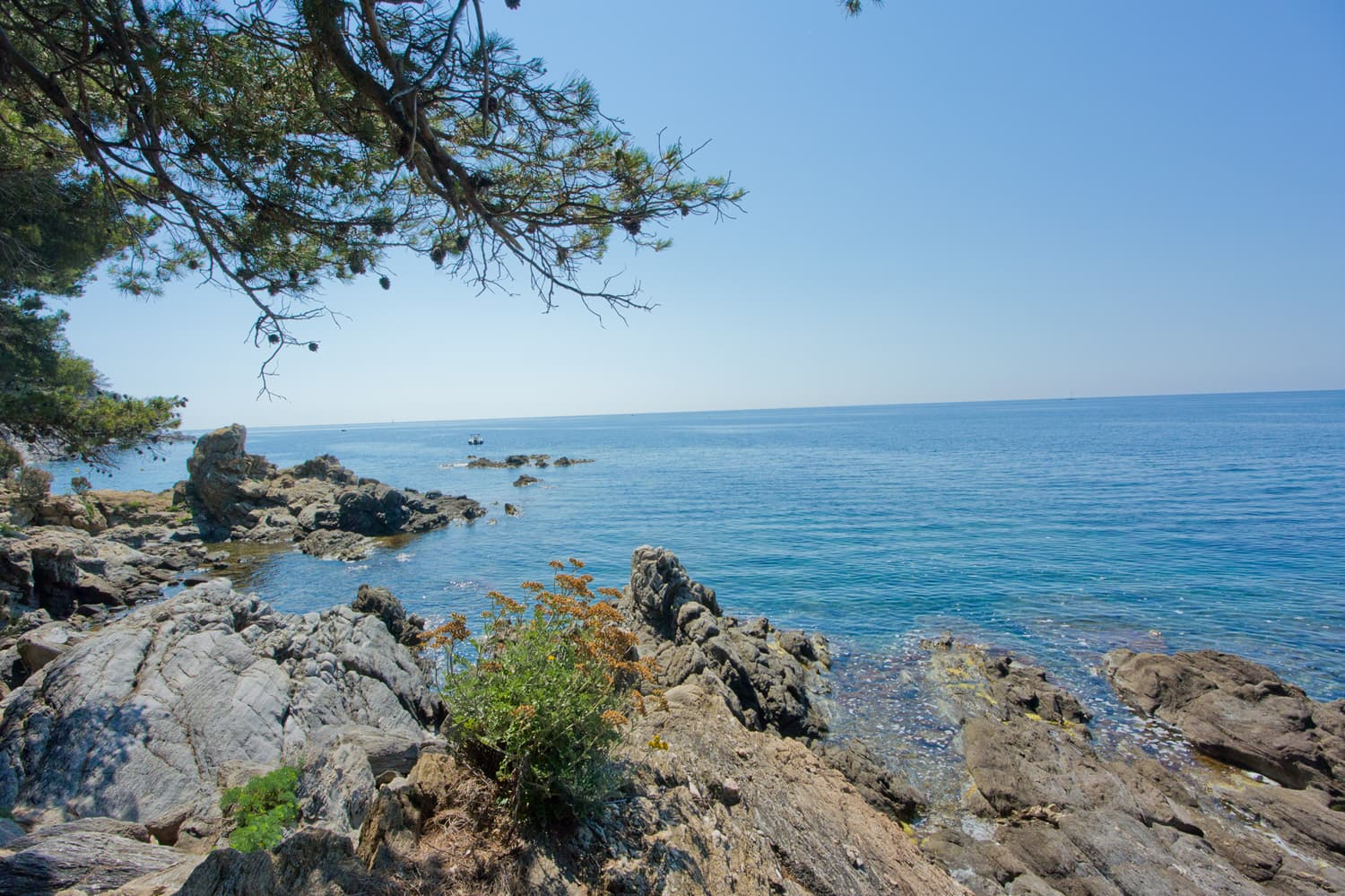 Mediterranean Sea views in Provence