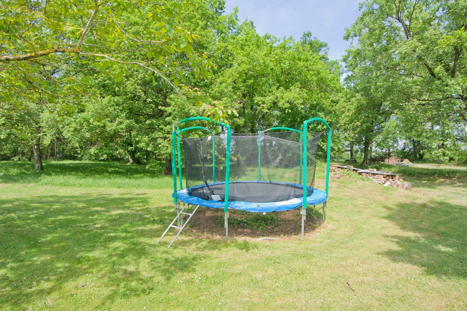 Lawned garden with trampoline