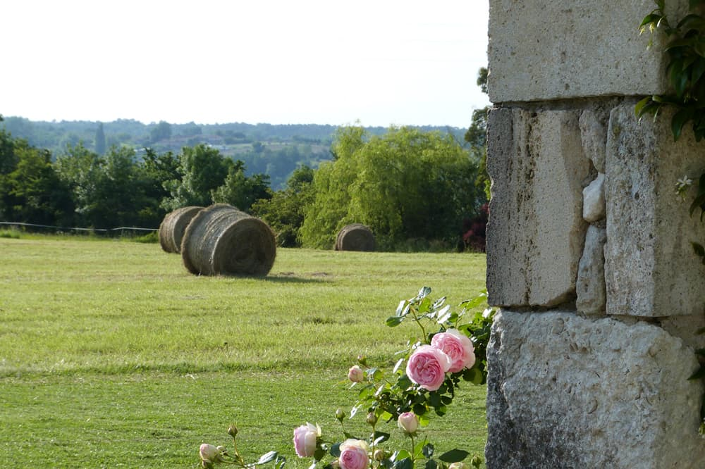Countryside views in South West France