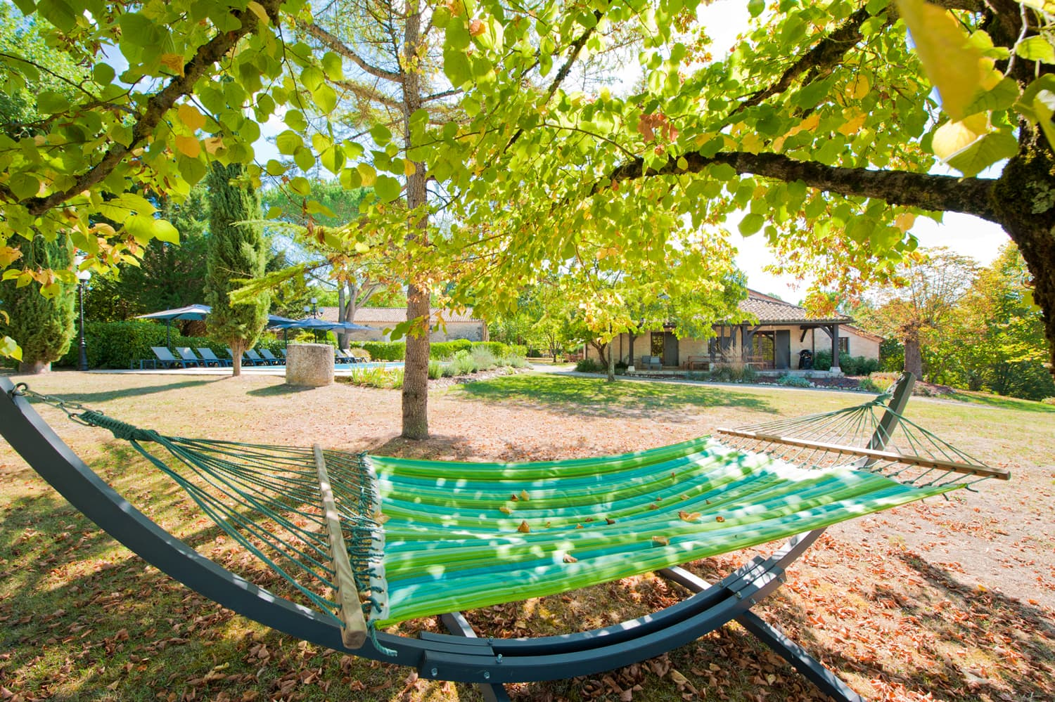 Lawned garden with hammock