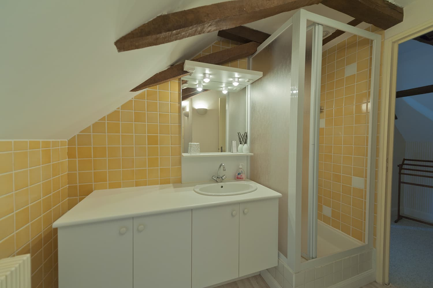 Bathroom in Loire holiday home